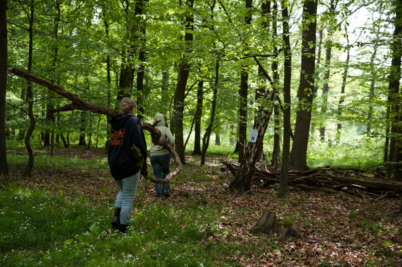 Widerbesetzung Hambacher Forst-15